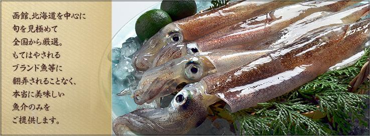 函館、北海道を中心に旬を見極めて全国から厳選。もてはやされるブランド魚等に翻弄されることなく、本当に美味しい魚介のみをご提供します。